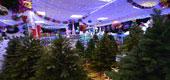 Фото 11: Магазин новогодних товаров.