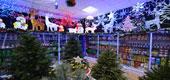 Фото 01: Магазин новогодних товаров.