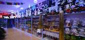 Фото 02: Магазин новогодних товаров.