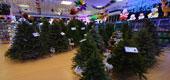 Фото 09: Магазин новогодних товаров.