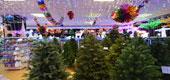 Фото 10: Магазин новогодних товаров.