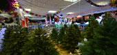 Фото 13: Магазин новогодних товаров.
